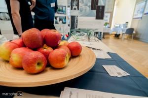 Stets beliebt - frische Äpfel